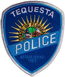 Police Chief badge Color 2.jpg